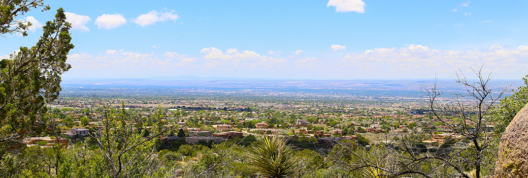 Distant View of Albuquerque